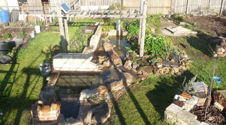2010_pond-system