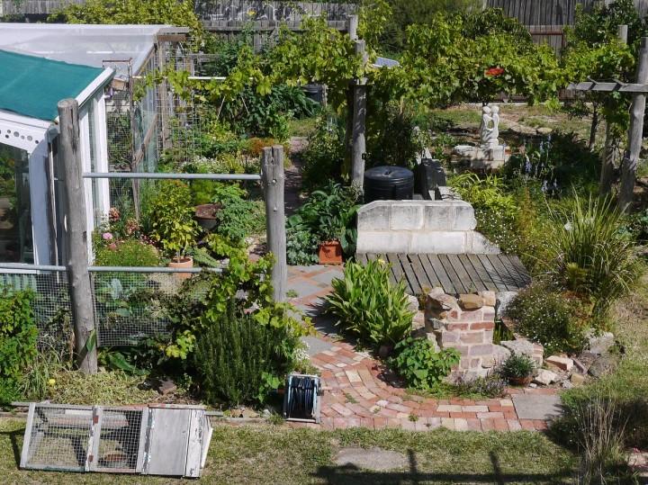 Watts Permaculture garden