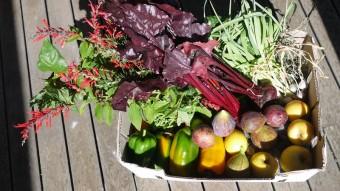 produce_box_3